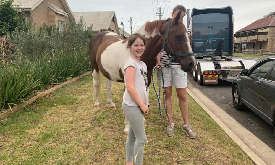 A young woman walks her horse past a queue of traffic so children can pat it