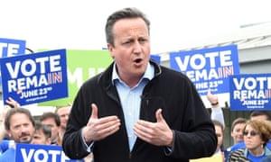 David Cameron: birds are pro-EU.