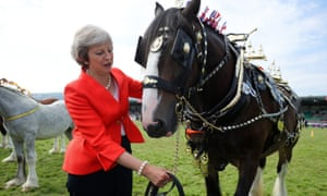 Theresa May with a shire horse named Tumble, who won first prize in its category, during a visit to the Royal Welsh Agricultural Show