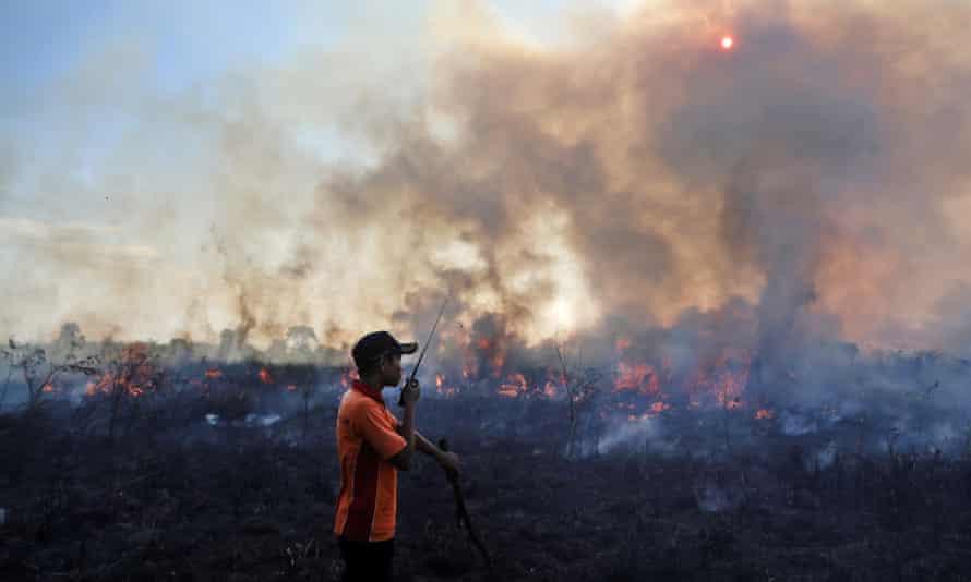 A fireman battles a peatland fire in Pemulutan, South Sumatra, Indonesia