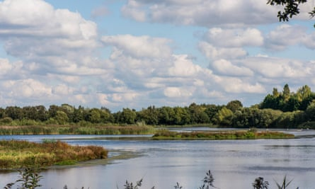 Whisby Nature Park, near Lincoln, Lincolnshire. One of the man made lakes within Whisby Nature Park, near Lincoln, Lincolnshire, UK