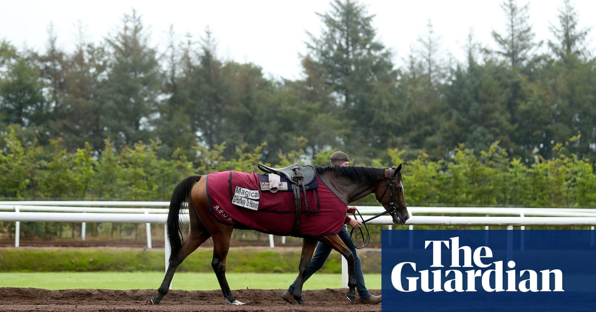 Talking Horses: Madhmoon 'in great shape' for Champion Stakes trial run | Tony Paley