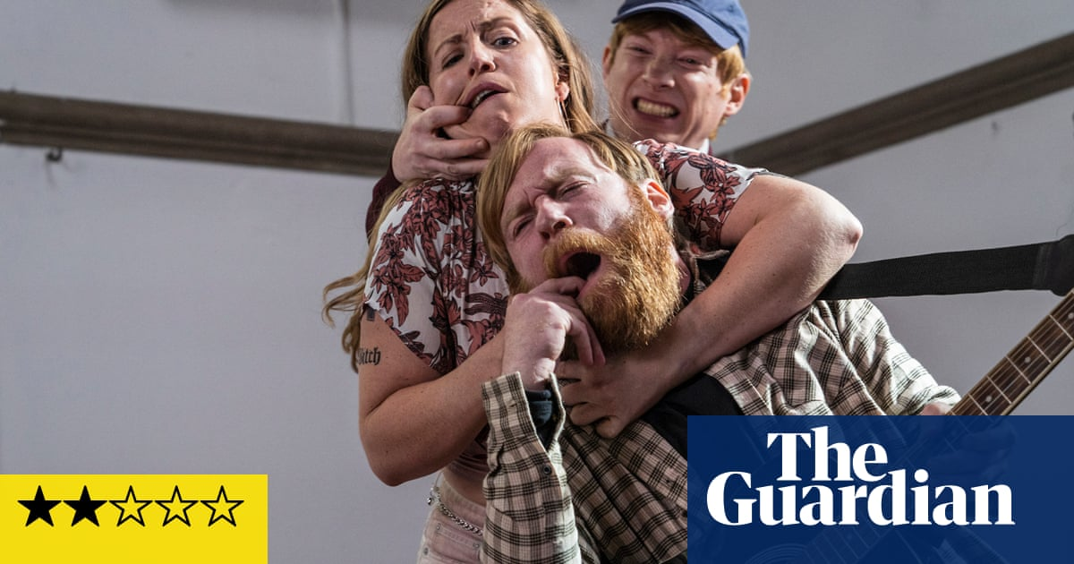 Frank of Ireland review – the Gleeson brothers wreak man-baby havoc