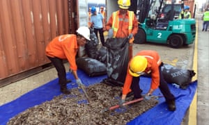 Vietnamese officials sort seized pangolin scales at a port in southern Vietnam in 2019.