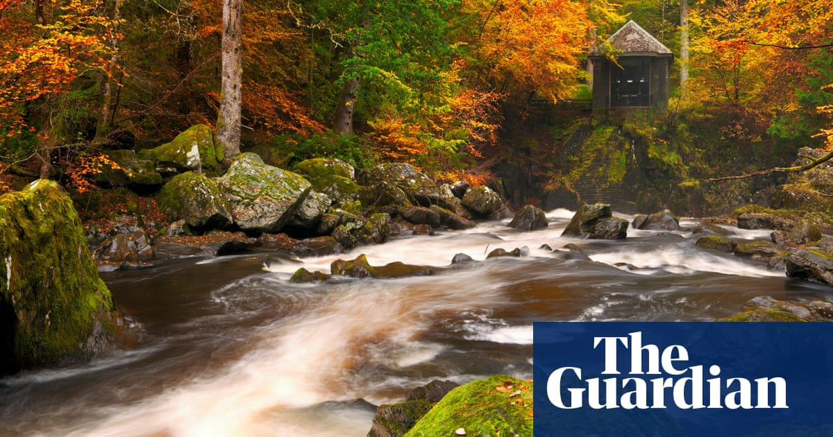 'An explosion of red and gold': readers' favourite spots for UK autumn colour