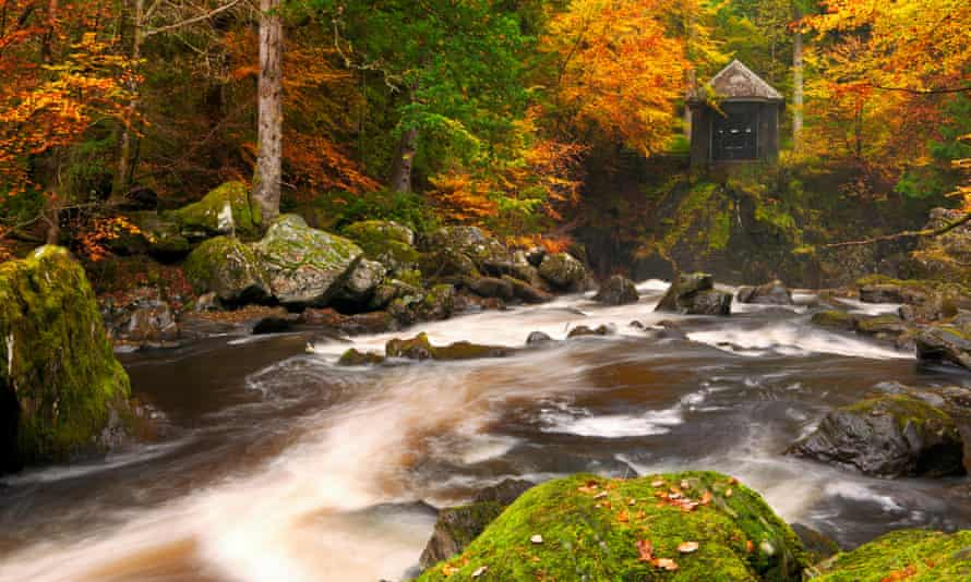 River through autumn colours at the Hermitage near Dunkeld