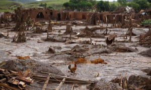 A chicken walks through the devastated village of Bento Rodrigues after the twin dam collapse in Brazil's Minas Gerais region.