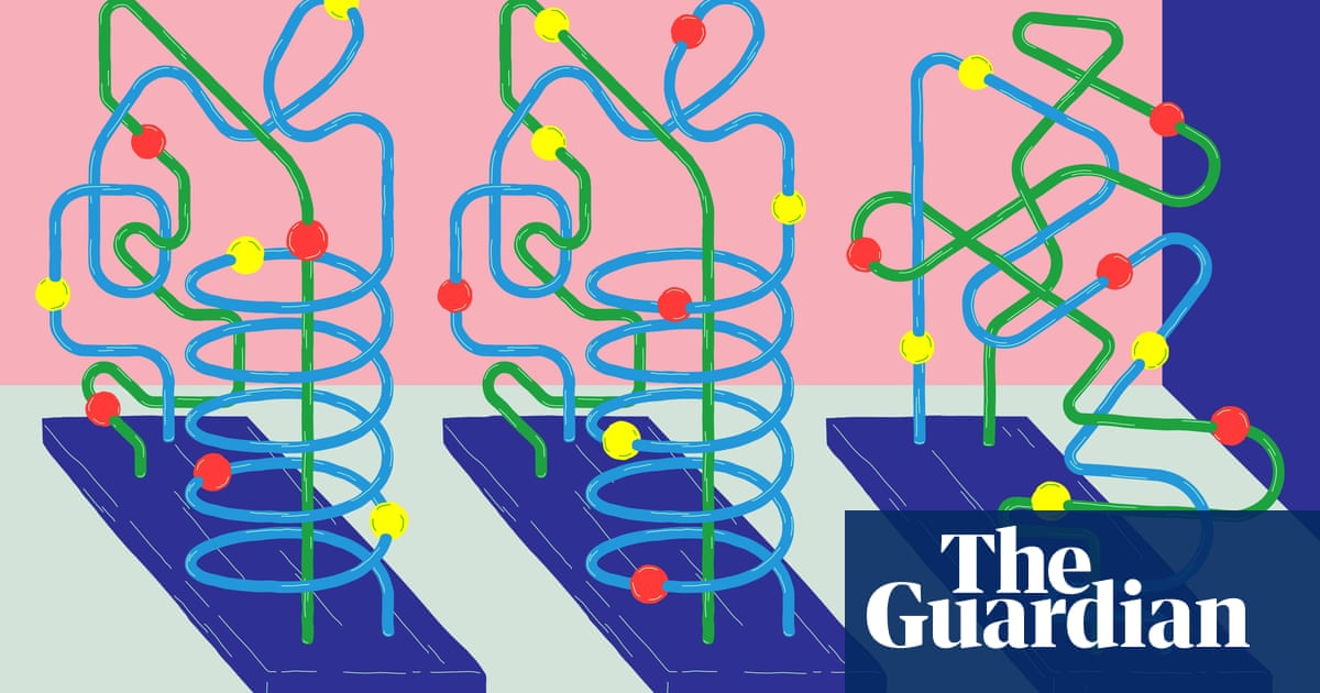 Solving the genome puzzle | News | The Guardian
