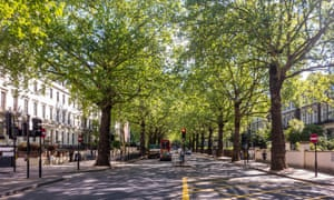 The app creates a personalised 'tree trail' for users to follow, telling the stories of trees along the route.
