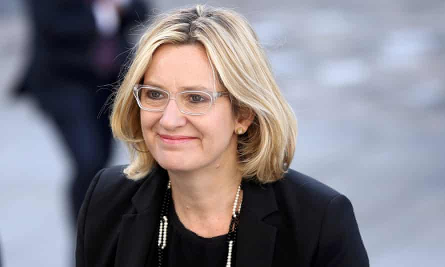 'That was a particularly unusual proposal I got when I was on maternity leave at the time' … Amber Rudd.