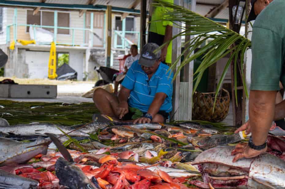 Fish are gutted in Tokelau