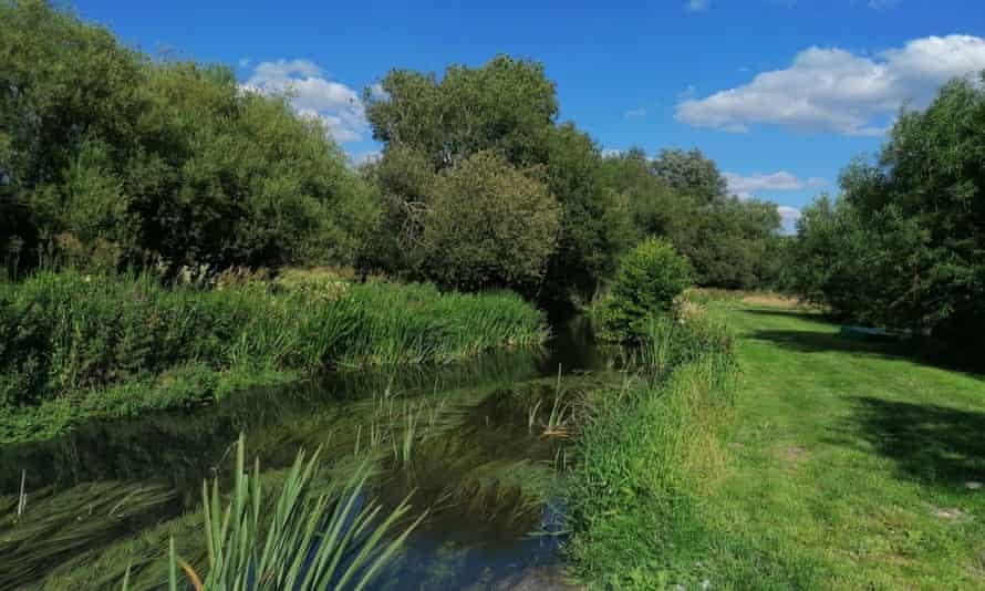 River Avon, Wiltshire