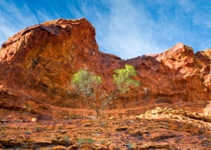 Kings Canyon, Watarraka national park, Australia, by Dr Kevin Privett