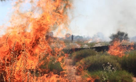 Indigenous rangers and traditional owners conduct fire management burns near the Western Australia and Northern Territory border