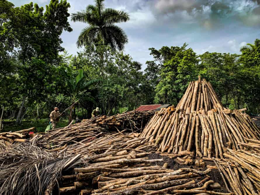 Charcoal producers put firewood to build a charcoal kiln in San Agustín