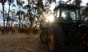 A cattle and sheep property in the Australian outback.