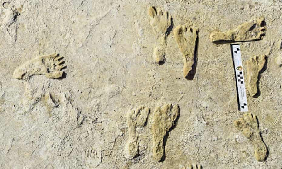 Fossilised footprints from more than 21,000 years ago at the White Sands national park in New Mexico