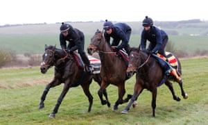 Altior and Nico De Boinville (left)  on the Lambourn gallops