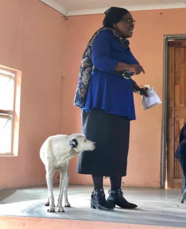 Fikile Ntshangase