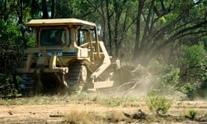 The Australian Conservation Foundation and WWF dispute environment department claims that land clearing in Queensland has decreased
