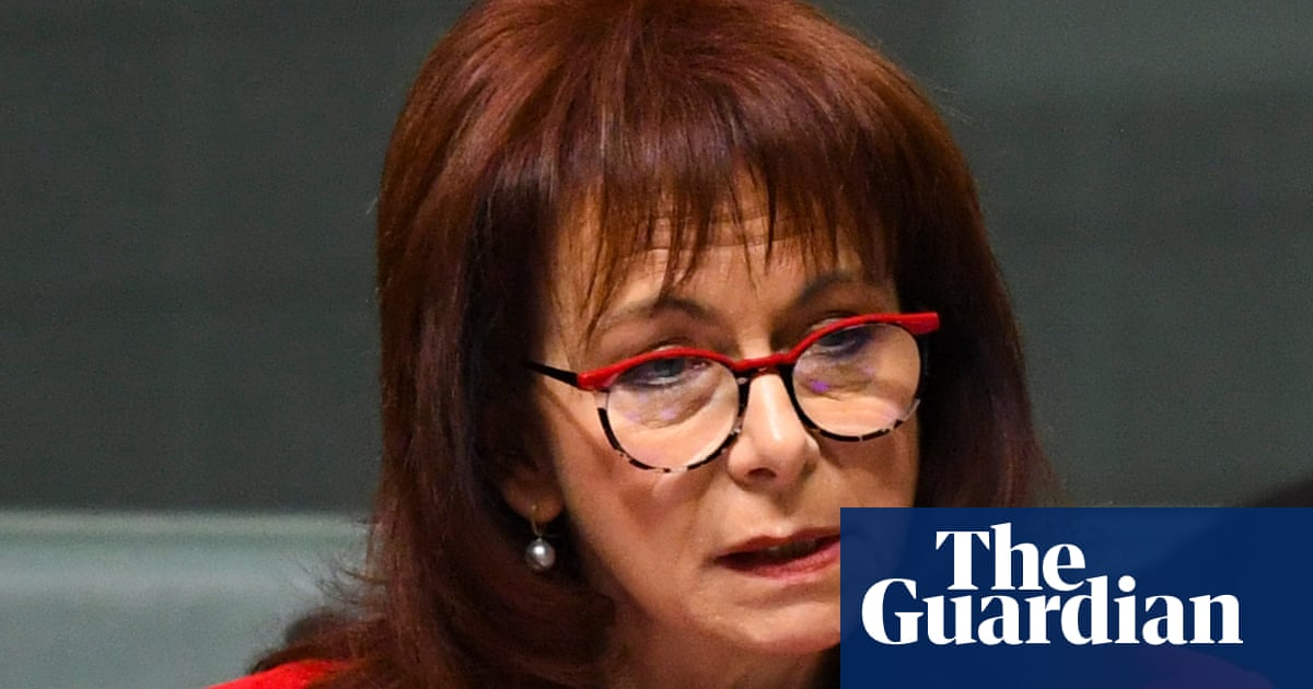 Conspiracy theorist ordered to pay $875000 over 'delusional' posts targeting Australian MP – The Guardian