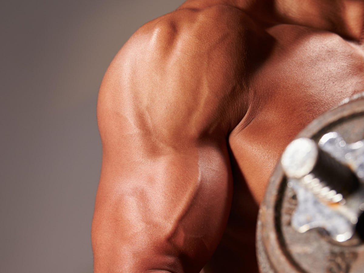 Gym Eat Repeat The Shocking Rise Of Muscle Dysmorphia Life And Style The Guardian