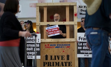 Cromwell protesting from inside a crate in 2014, demanding Air France stop flying monkeys to laboratories.