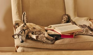 'I am followed by a dog called ego' (Nietzsche): Oscar reflects on his reading.