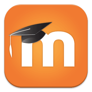 Moodle Hat Orange Background