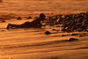 La Libertad, PeruA boy lies in the sand as the sun sets over El Tunco beach