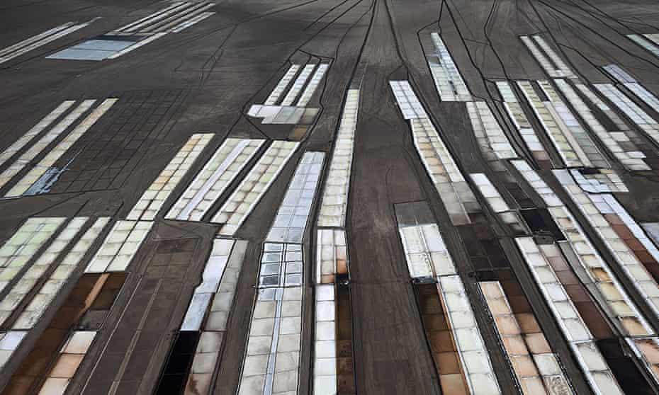 Salt pans in Gujarat, India