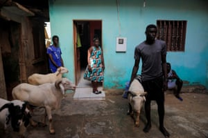 Khadjou watches her relatives prepare to slaughter sheep for a feast of sacrifice during Eid al-Adha
