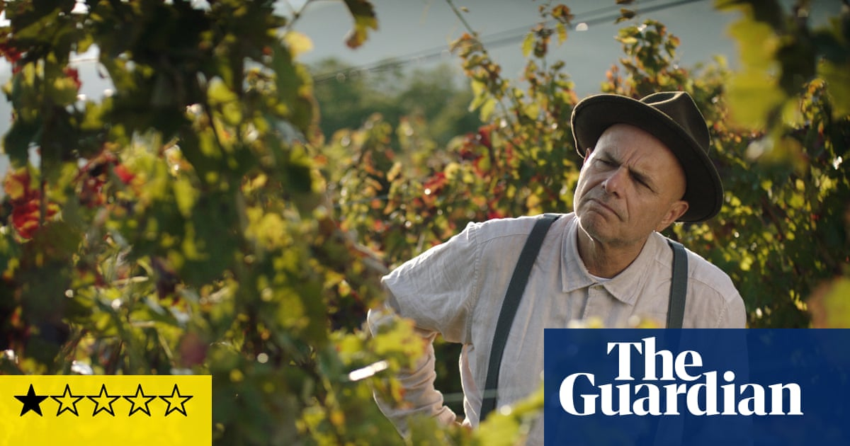 From the Vine review – laugh-free comedy of midlife Italian escape