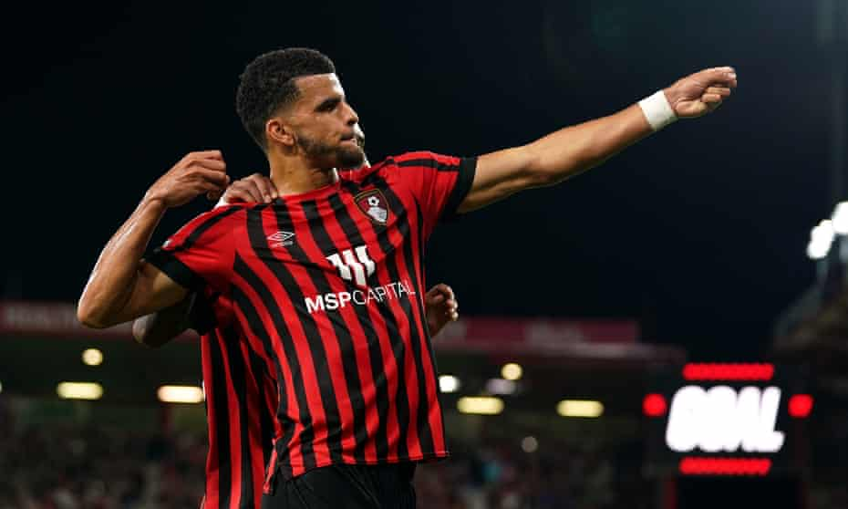 Dominic Solanke celebrates scoring what turned out to be Bournemouth's winning goal in their 2-1 victory against QPR.