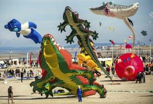 Many kites on the beach