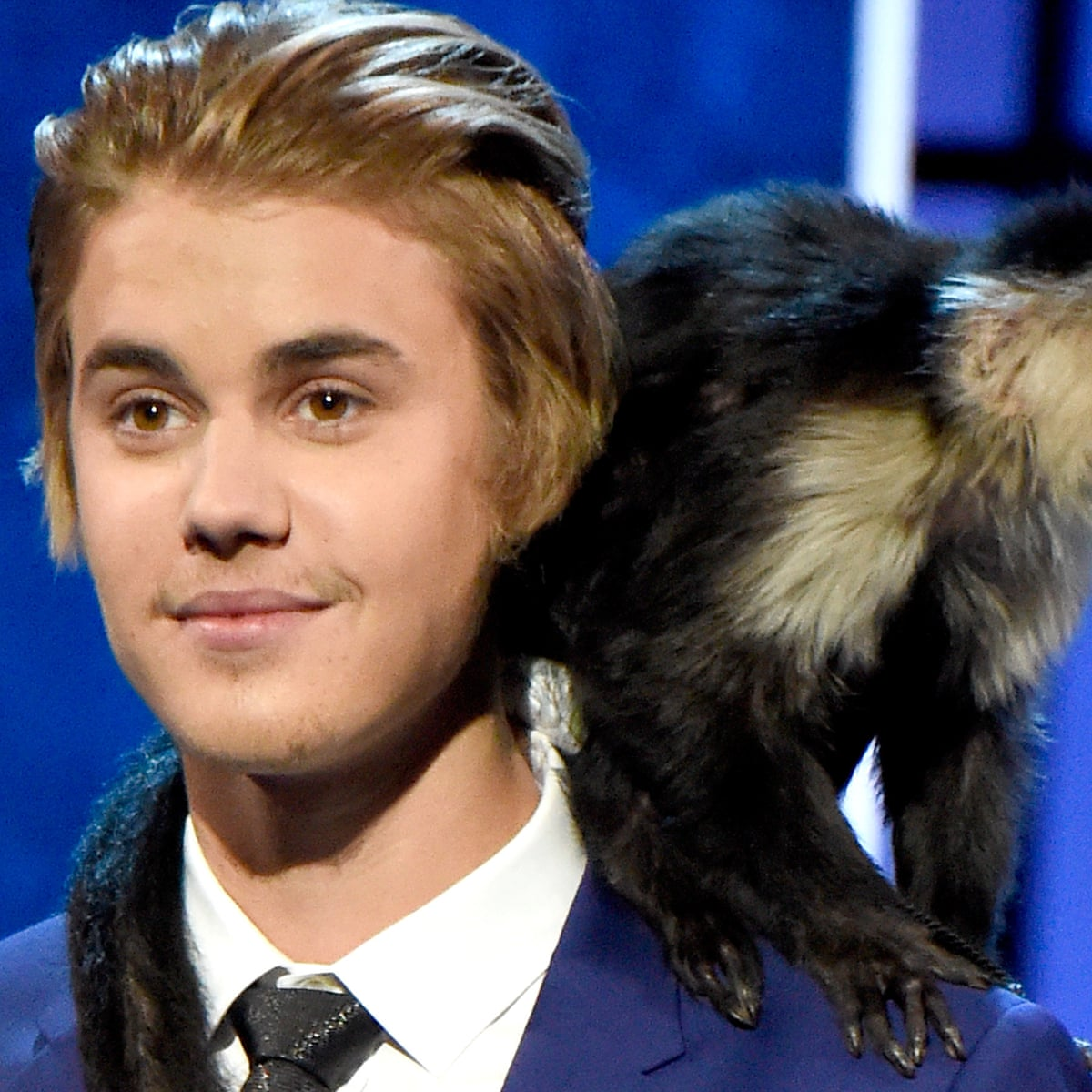 No more monkey business: why primates should never be pets | Life and style  | The Guardian