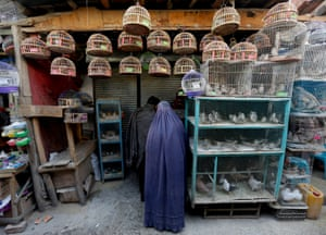 War seems a long way off in the Ka Faroshi bird market in the heart of Kabul's old city