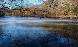 The icy pond at Ebernoe Common, West Sussex