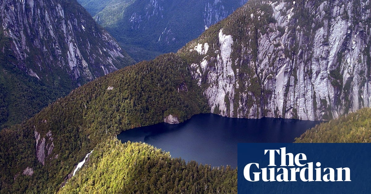Record $5bn donation to protect nature could herald new green era of giving