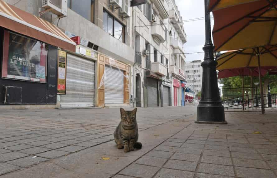 The deserted avenue Habib Bourguiba in Tunis