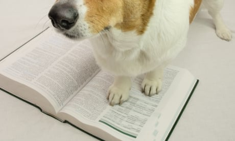 My book is being reviewed by a dog. Who am I to argue with the star rating?