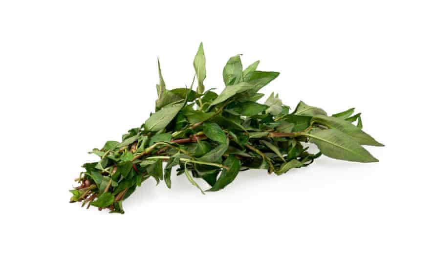 Vietnamese mint (sometimes called Vietnamese coriander).