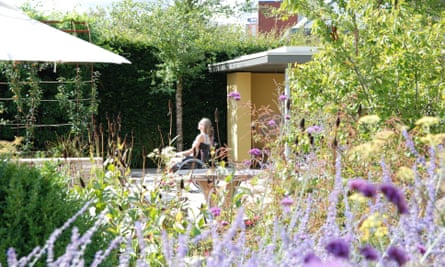 'Exceptional': Horatio's Garden for spinal injury patients at Salisbury hospital.