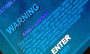 An entry page for a pornography website