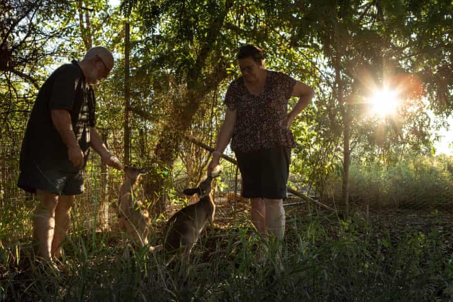 Angus and Karen Emmott feed young kangaroos