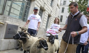 Farmers for a People's Vote campaigners protest against a no-deal Brexit in London on Thursday.