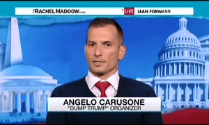 Angelo Carusone, President of Media matters for America, appearing on the Rachel Maddow Show