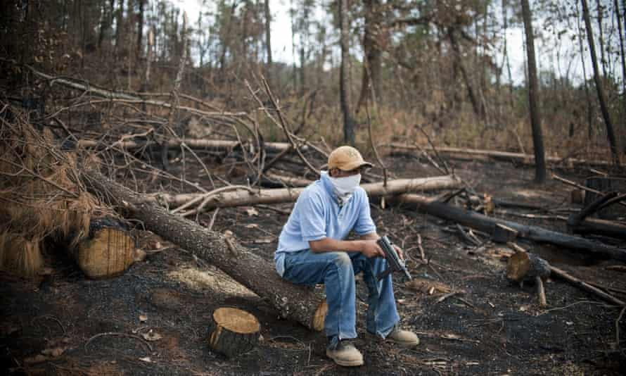 A masked man, member of Cherán's security commission or ronda, stands guard in the forest.