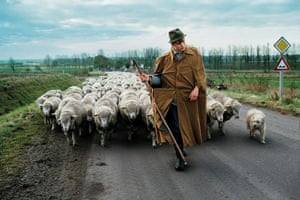 A shepherd walks with a herd of sheep near Magdeburg in the former German Democratic Republic, 1989