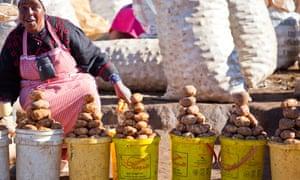 Woman selling potatoes at a vegetable market in rural Kenya